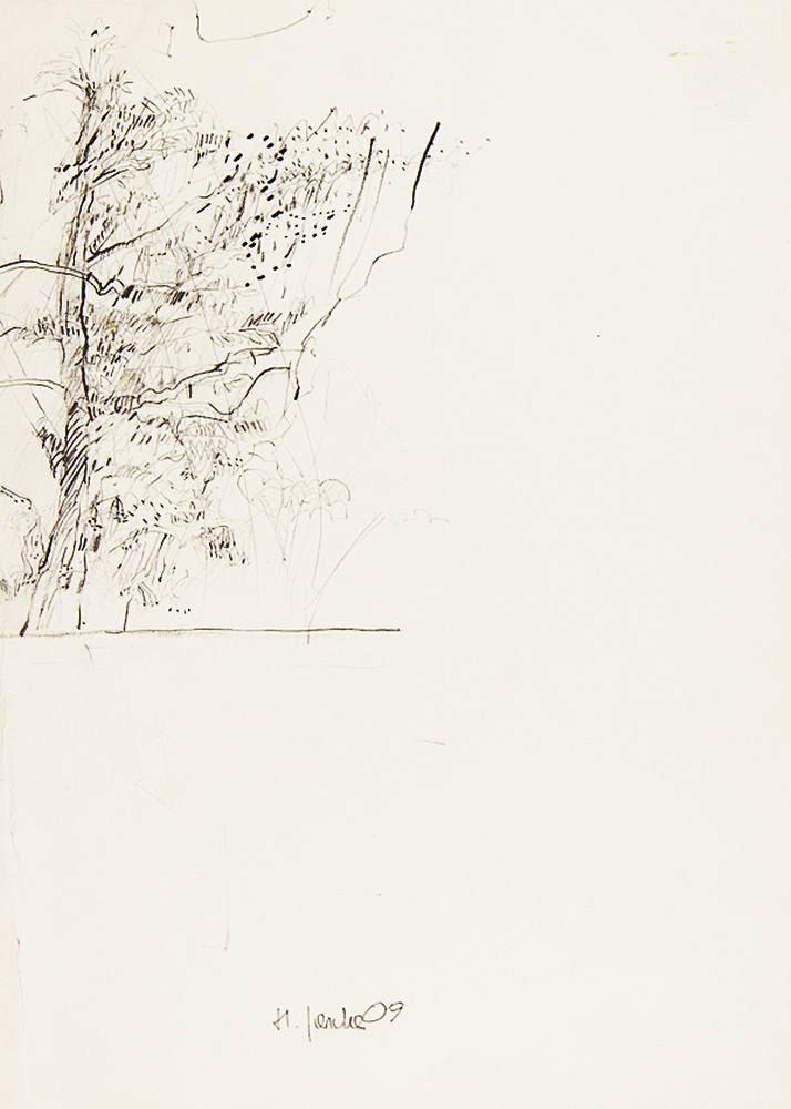 3 - Studien vor Ort - Bleistift - 55x40cm 2009