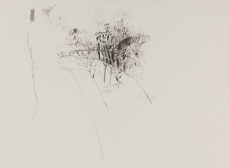 4 - Studien vor Ort II - Bleistift - 55x40cm - 2005